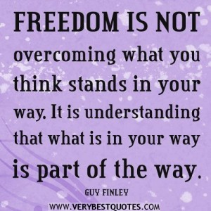 freedom-quotes-freedom-is-not